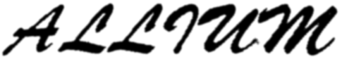 Floristería Allium